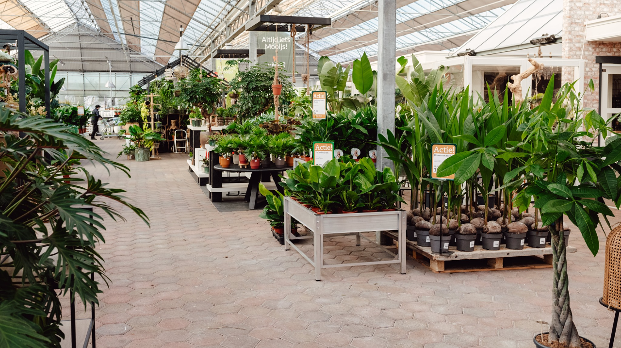 Bezoek tuincentrum de Mooij in Rijnsburg!