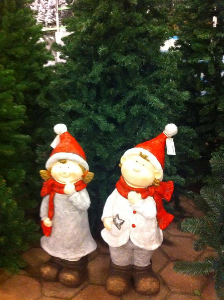 Kom kerstbomen kopen in de buurt van Leiden!