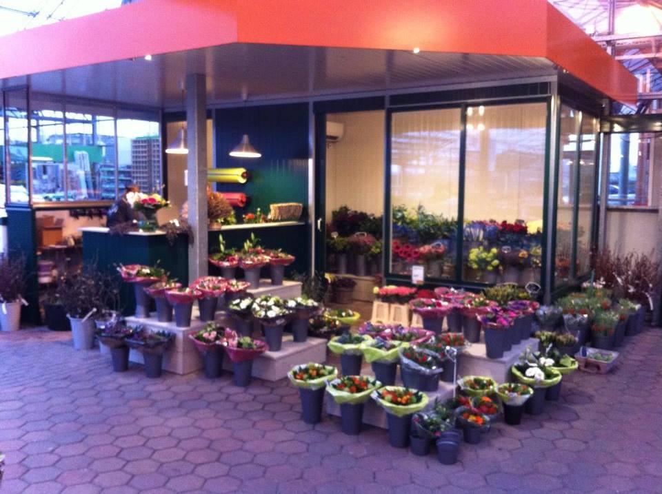 Kom bloemen kopen bij Tuincentrum De Mooij in Rijnsburg!