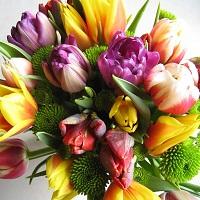 Bloemen kopen in Rijnsburg doet u bij Tuincentrum De Mooij