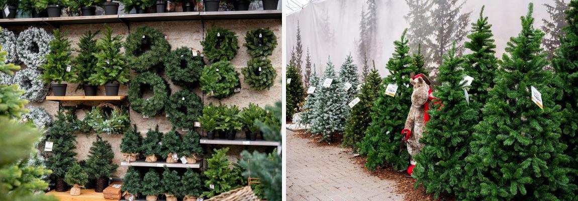Kunstkerstboom Black Box en Triumph Tree kopen |  Tuincentrum de Mooij