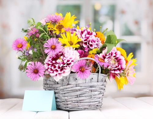 Uw bloemist uit omgeving Leiden voor de mooiste boeketten